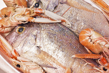 snapper with prawns