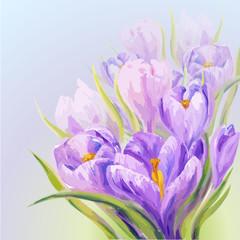 Crocuses. Spring flowers invitation template card