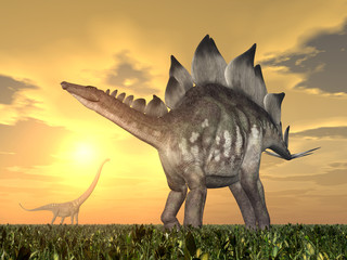 Stegosaurus and Mamenchisaurus