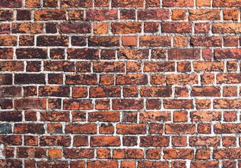 Fototapeta Cegła mur gotyk tekstura