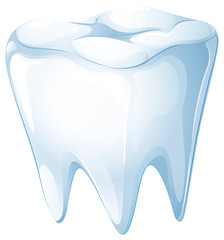 A tooth