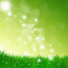 Bright Spring Background