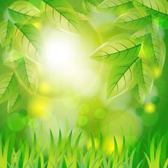 Natural spring background. Vector illustration