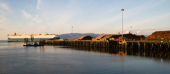Shipping Lane Columbia River Large Ship Passes Log Pier
