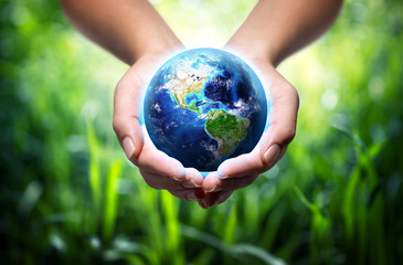 Wall Mural - earth in hands - grass background - environment concept