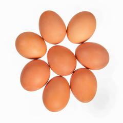 Eight brown eggs