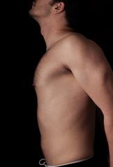 Human anatomy series: torso