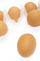 Chicken brown egg closeup view background