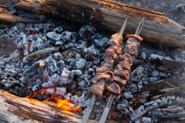 preparing schaschlik on fire.