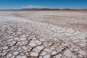 Flat saline desert, with dry and cracked ground in Bolivia.