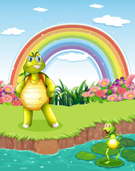 A turtle and a frog at the pond with a rainbow in the sky