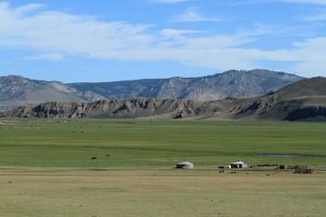 Mongolische Steppe des Khustain Nationalparks