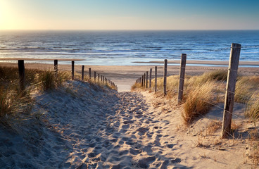 Tuinposter Bestsellers path to North sea beach in gold sunshine