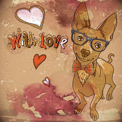 Hipster background with a dog