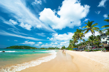 beach landscape in Sri Lanka