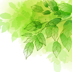 Spring leaf vector background