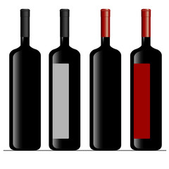 bottle of wine color vector