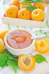 fresh apricots and gam