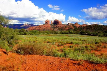Fototapete - Cathedral Rock and landscape near Sedona, Arizona, USA