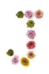 Rose font J