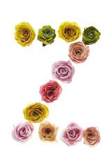 Rose font Z