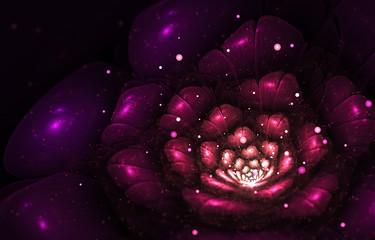 Canvas Afdrukken  - violet abstract flower