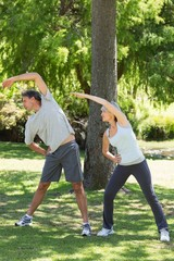 Couple exercising in the park