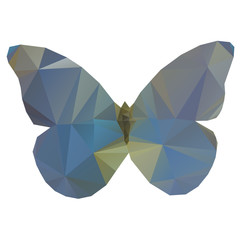 Triangle butterfly