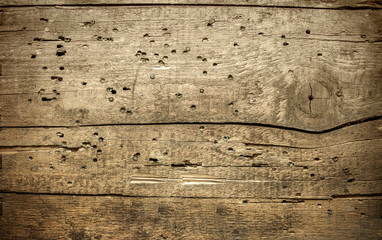 texture of old wooden planks pitted termites , background