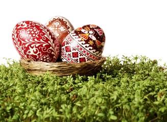 Easter eggs in a nest on cuckooflower