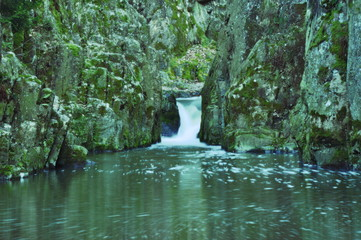 photo of small waterfall in forest