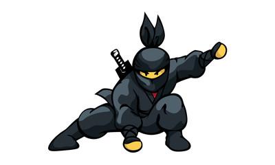 Ninja Landing