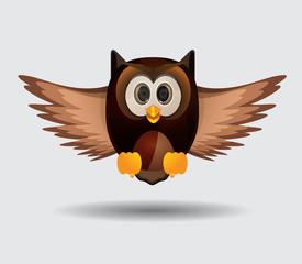 Fying owl bird