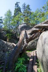 Warren rocks - Błędne skały