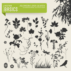 vector elements: flowers and leaves silhouettes