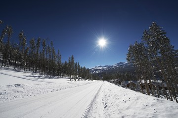 Fototapete - Snowy Breckenridge Road