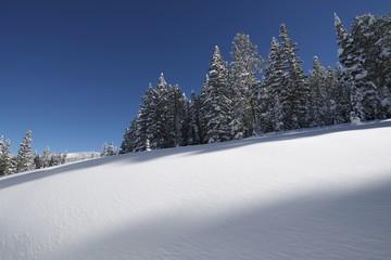 Wall Mural - Snowy Hills Colorado