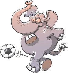 Cool elephant executing a stunt with a soccer ball