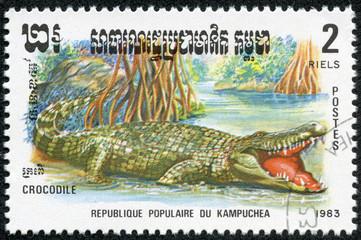 stamp printed by Kampuchea shows Crocodile