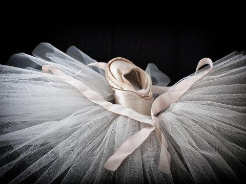 ballet shoes 4