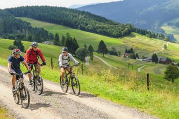 Fototapete - Tour mit dem Mountainbike