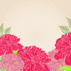 Romantic floral background with  peonies flowers.Vector