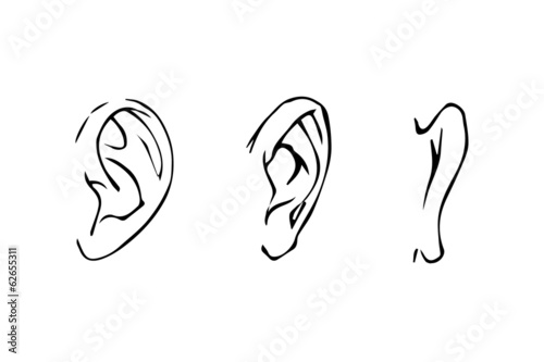 Line Drawing Ear : Quot line drawing of the human ear side view front rear