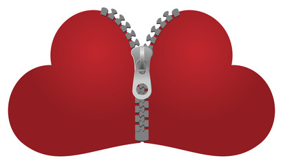 two vector hearts zipped together