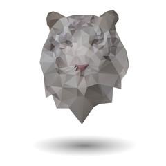 Triangle tiger icon