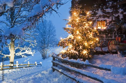 österreich Weihnachtsbaum.österreich Land Salzburg Flachau Beleuchteter Weihnachtsbaum Mit
