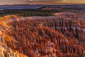 Silent City - Bryce Canyon Wall mural