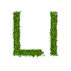 Isolated grass alphabet L