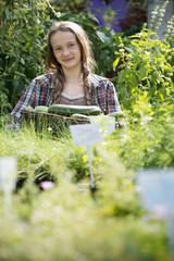 Summer on an organic farm. A girl holding a basket of fresh marrows.