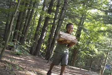Summer. A boy carrying firewood through the woods.